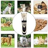 Zoom IMG-1 ceenwes tosatrice per gatti cani