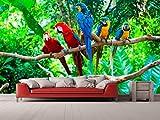 Fotomural Vinilo para Pared Loros Selva | Fotomural para Paredes | Mural | Vinilo Decorativo | Varias Medidas 150 x 100 cm | Decoración comedores, Salones, Habitaciones.