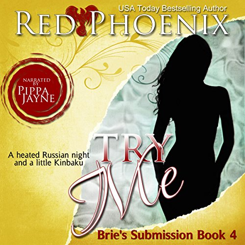 Try Me audiobook cover art