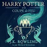 Harry Potter et la Coupe de Feu - Harry Potter 4 - Format Téléchargement Audio - 29,99 €