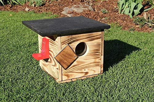 Garten und Holztrends Hummelhaus mit Extra großem Sichtfenster (H2) Hummelkasten, Hummelhotel, Hummelpenzion mit Wachsenmottesperre, Insektenhotel, Bienenhaus,Insektenhaus,Bienen