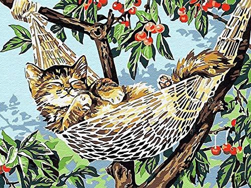 Wzxzf DIY Pintura Al Óleo por Número De Kit Gato En Columpio Pintura por Kits De Números para Niños Adultos Principiantes Estudiantes Pared Lienzo Arte(Sin Marco)-50x65cm