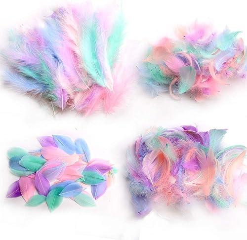 Lot de 300 plumes d'oie naturelles et douces pour loisirs créatifs, attrape-rêves, décoration de mariage, maison, fête