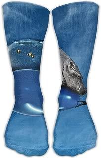 Personalized Sky Hippopotamus Aquarium Unisex Short Socks Casual Athletic Outdoor Socks Novelty Socks 30cm