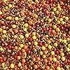 Sprinkles | Fall Sprinkles | 8 oz | Autumn sprinkles | Thanksgiving | Edible sprinkles | Baking sprinkles | Manvscakes #2