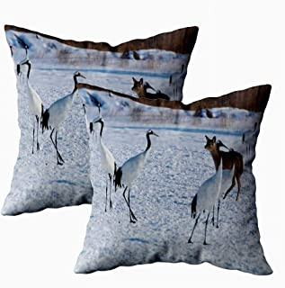 KIOAO Fall Pillow Case, Standard 2Sets 18X18Inch Soft Pillowcase Covers Deer The Area of Crane Invading Wintering Printed with Both Sides,Halloween Christmas Pillows