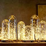 Glimmer Lightings Fairy Thin String Light for Home Decoration, Bed Room Decor, Birthday Party, Diwali, Christmas - Pack of 3 Warm White, 3 Meters