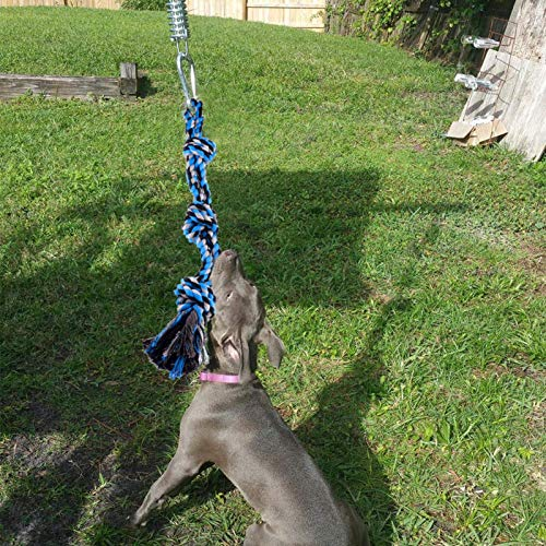 Spring Pole Dog Rope Toys With A Big Spring Pole Kit, Strong Dog Rope Toy...