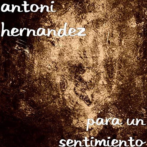 Antoni Hernandez