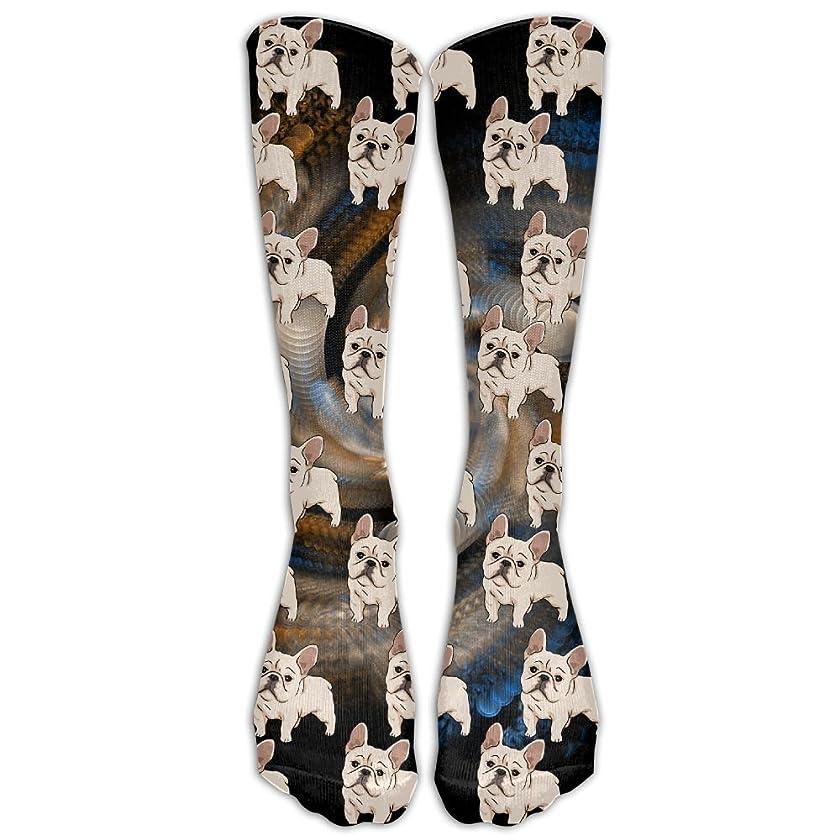 DaSOC French Bulldog Unisex Novelty Premium Calf High Athletic Socks Fashional Tube Stockings Size 6-10