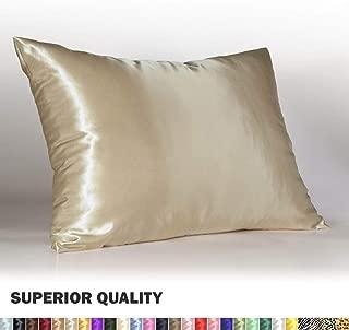Shop Bedding Luxury Satin Pillowcase for Hair – Standard Satin Pillowcase with Zipper, Champagne (1 per Pack) – Blissford