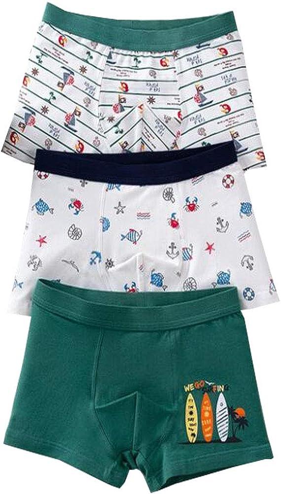 ZhuoNengDuo Soft Cotton Underpants Boys Kids Shorts Pants for Teenager Boxer Briefs