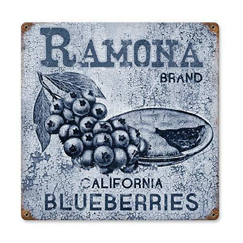 HONGXIN Wandschild aus Blech, Motiv: Ramona, Blaubeeren, Retro, für Küche, Kneipe, Bar, Café, Garage, Hotel, Büro, Schlafzimmer