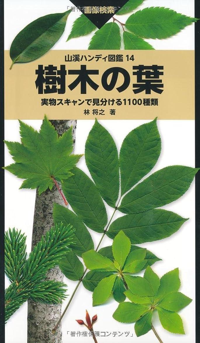 メロドラマティック懇願する完全に樹木の葉 実物スキャンで見分ける1100種類 (山溪ハンディ図鑑)