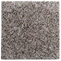 "Smart Squares Piece of Cake 9"" x 9"" Ultra Premium Residential Soft Carpet Tiles, Peel and Stick, Easy DIY Installation, Seamless Appearance, Made in USA (Sample, 905 Moonbeam)"