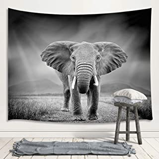 Black and White Elephant Decor Tapestry, Wild Animals on African Grassland Art Wall Hanging for Bedroom Living Room College Dorm TV Backdrop Wall Blankets 71X60 Inches