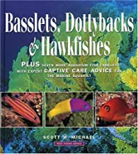 Best rainbow fish care Reviews