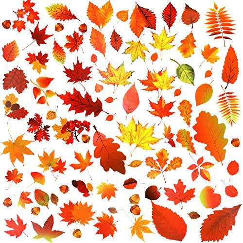 Qpout Thanksgiving Fensteraufkleber (170 Stück), Herbst Ahorn Blätter Fenster Aufkleber für den Herbst Froh Thanksgiving Party Erntefest Saisonale Glasfenster Dekorationen