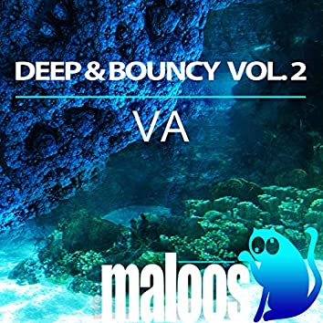 Deep & Bouncy Vol. 2