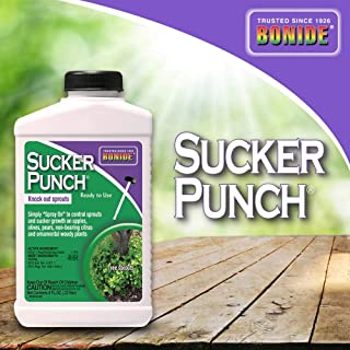 Bonide (BND276) - Ready to Use Sucker Punch, Stop Suckers Sprouting from Roots and Pruning Cuts (8 oz.)