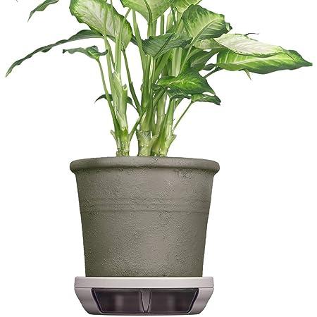 ポットキーパー 鉢 鉢皿 観葉植物の清潔グッズ お部屋きれいにお手入れ簡単ラクに フロスティグレイ