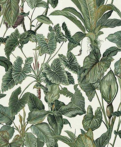 Erismann 6303-07 - Carta da parati in tessuto non tessuto, collezione Paradiso, multicolore, 10,05 x 0,53 m