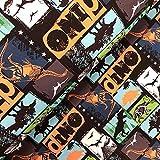 Swafing GmbH Softshell Fiete Dinosaurier grün/orange -