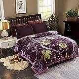 JML Plush Raschel Blanket, Korean Mink Blankets - Silky Soft, 2 Ply Printed Fleece Blanket (Purple, King)