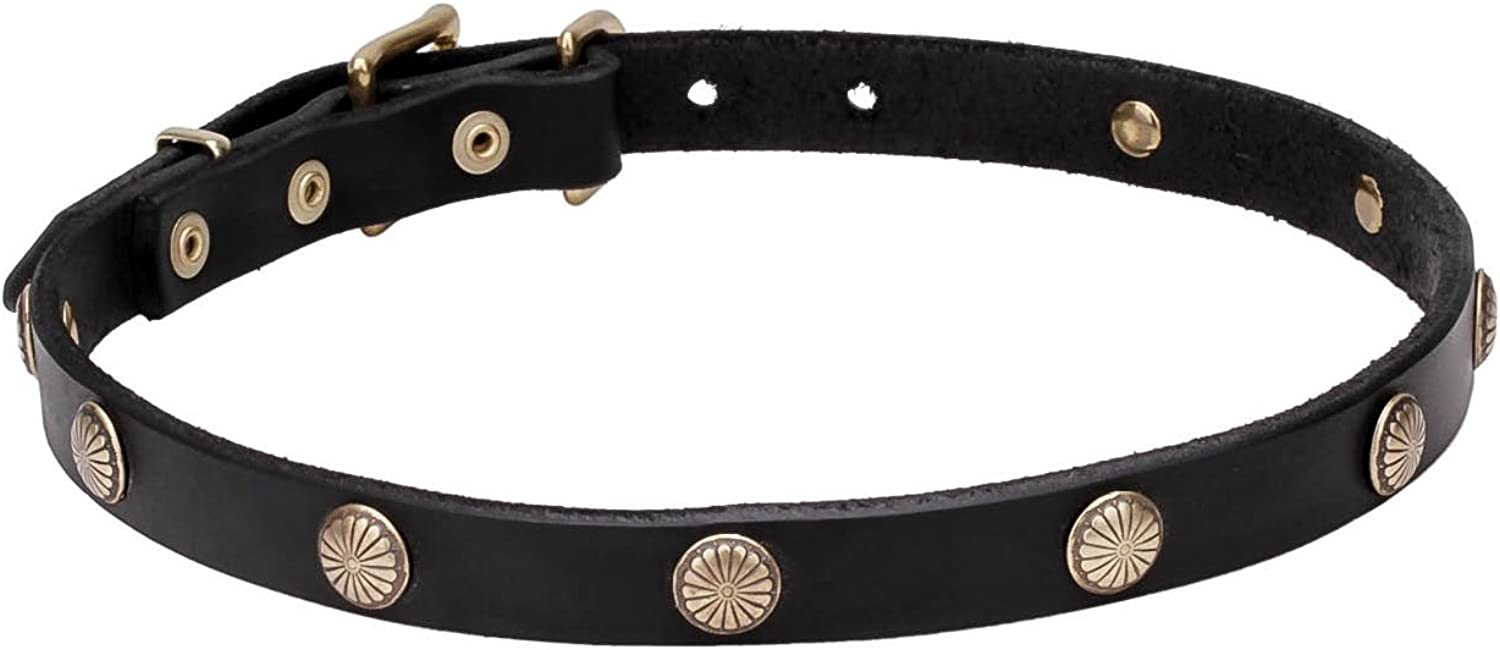 27 inch Black Leather Dog Collar with Engraved Brass Studs   Sunny Beams   3 4 Inch (20 mm) wide