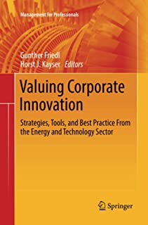 Valuing Corporate Innovation: Strategies, Tools, and Best Practice From the Energy and Technology Sector