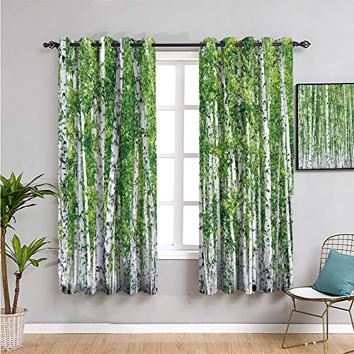 Birch Tree Extra Long Curtain, Curtains 84 inch Length Fresh Green Leaves Summer Forest Rural Landscape Lush Environmental Image Room Darkened Green White Black W84 x L84 Inch