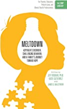 Meltdown: Asperger's Disorder, Challenging Behavior, and a Family's Journey Toward Hope: Volume 1 (The ORP Library)