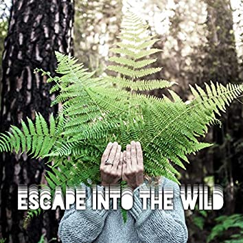 Escape Into the Wild – Beautiful Nature Sounds Collection for Relaxation, Meditation, Sleep or Study, Water, Birds, Rain and Birds Songs, Healing Therapy, Piano