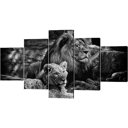 bedroom design ideas wild animal art lion photography poster