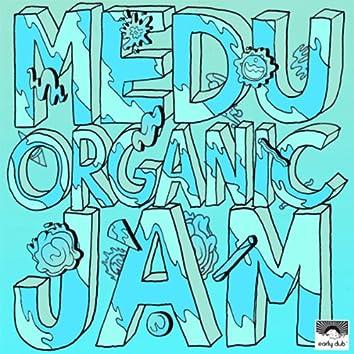Organic Jam EP
