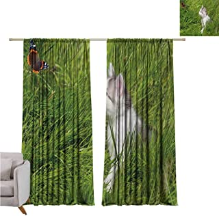 Nature Heat Insulation Curtain Cute Cat Watching a Butterfly on Grass Field Garden Inspirational Picture for Living Room or Bedroom W100 x L84 Inch Fern Green White Grey