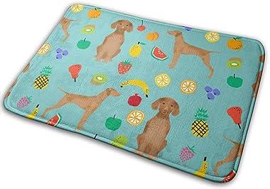 Vizsla Dog Fruit Summer Cute Fun Pet Dog Vizslas Dog_24512 Doormat Entrance Mat Floor Mat Rug Indoor/Outdoor/Front Door/Bathr