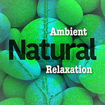 Ambient Natural Relaxation