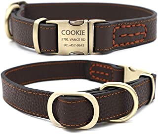 leather dog collar with nameplate
