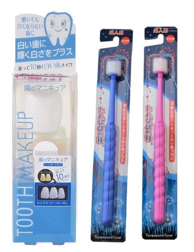 同行そのような健康ハニックDCアクア たんぽぽの種歯ブラシ2本セット