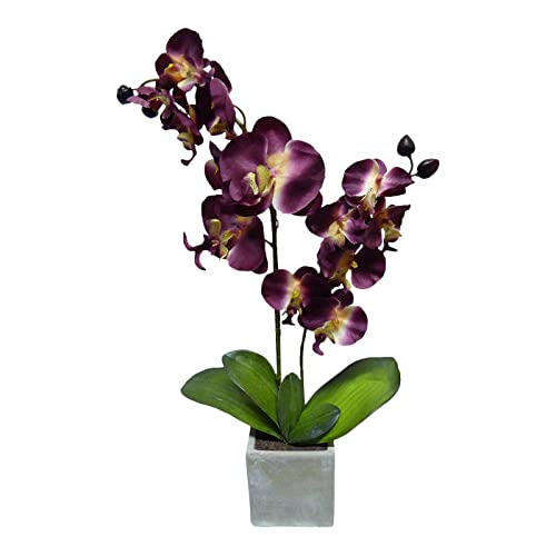 60cm Burgundy Orchid in Grey Stone Pot Stunning Houseplant UK-Gardens Large Artificial Potted Plant