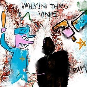 Walkin' Thru Vine