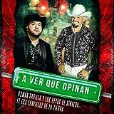 A Ver Que Opinan (feat. Los Traviezoz de la Zierra)