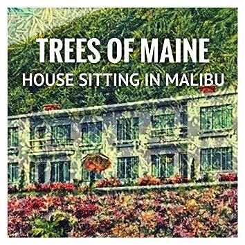 House Sitting in Malibu
