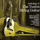 12 String Guitar Rag