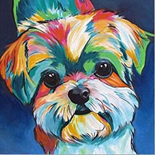 5D DIY Diamond Painting Crystal Rhinestone Kits for Adults Full Drill Cross-Stitch Patternsfor Decor Yorkie Colors Dog 11.8x11.8in 1 Pack by Toyvip