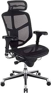 WorkPro Quantum 9000 Ergonomic Mesh/Nylon Executive High-Back Chair with Headrest, Black/Silver