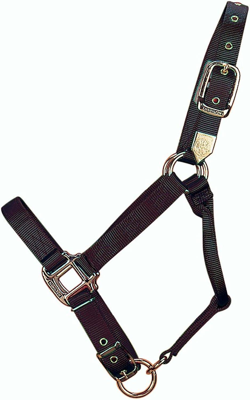 Hamilton 1Inch Nylon Adjustable Horse Halter, Yearling, 300 to 500Pound, Black