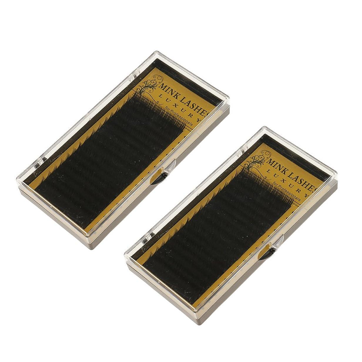ハードウェア速い生まれKesoto つけまつげ アイラッシュ エクステンション 0.07Cカール 個々のまつげ メイクアップ ブラック 2箱 10mm 12mm