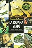 La iguana verde / The green Iguana